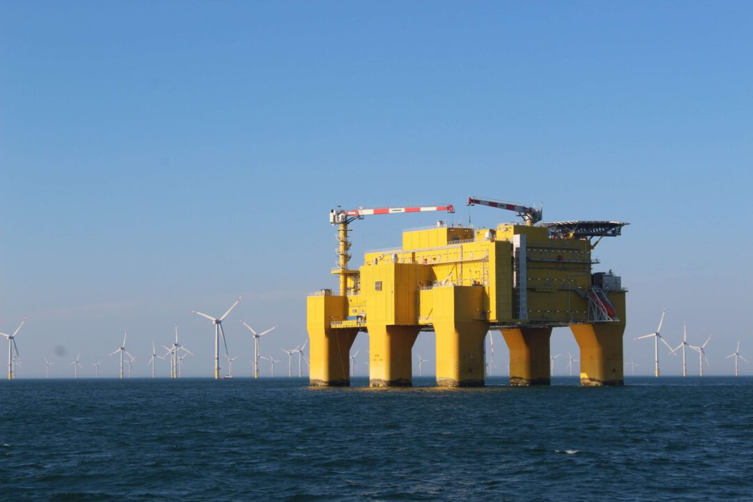 Kreuzfahrt zum Windpark